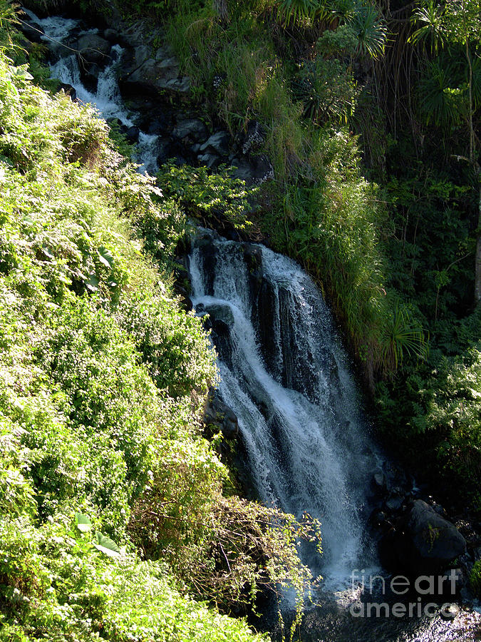 Tropics Photograph - Waterfall I by Patricia Griffin Brett