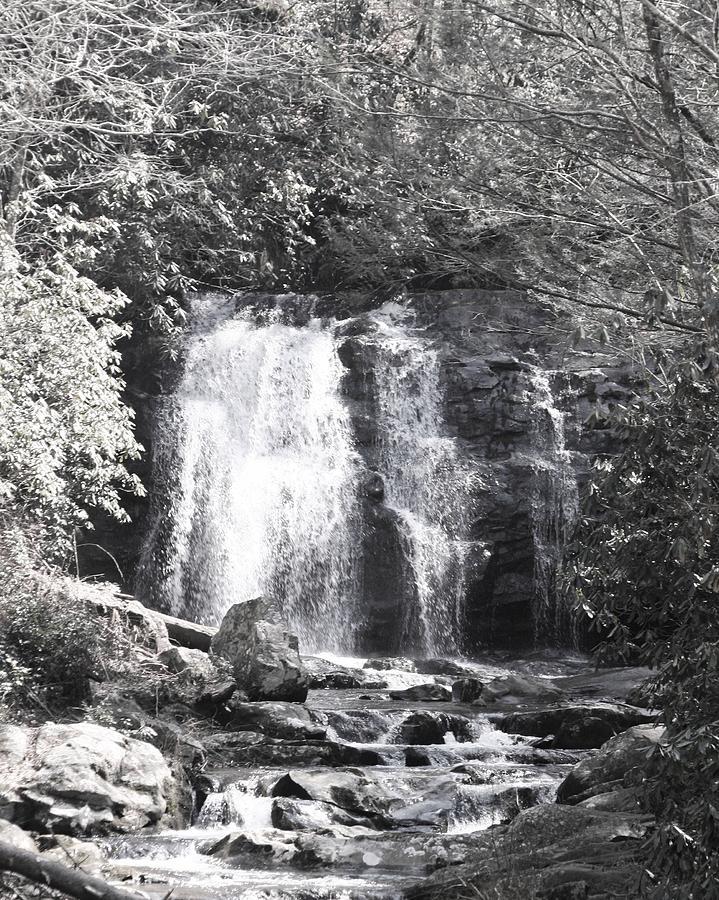 Waterfall Photograph by Lisa Johnston