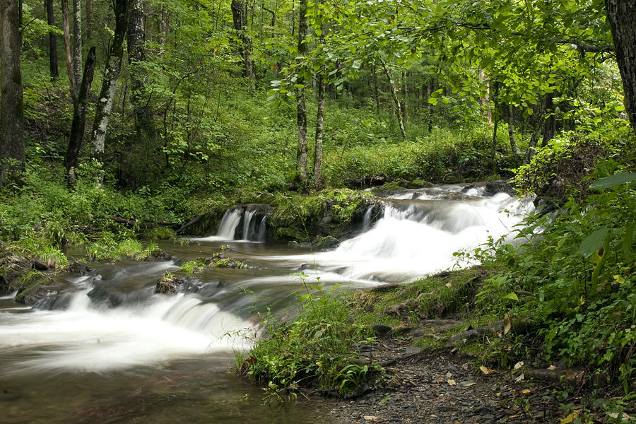Waterfall Photograph - Waterfall Oasis by Tina B Hamilton