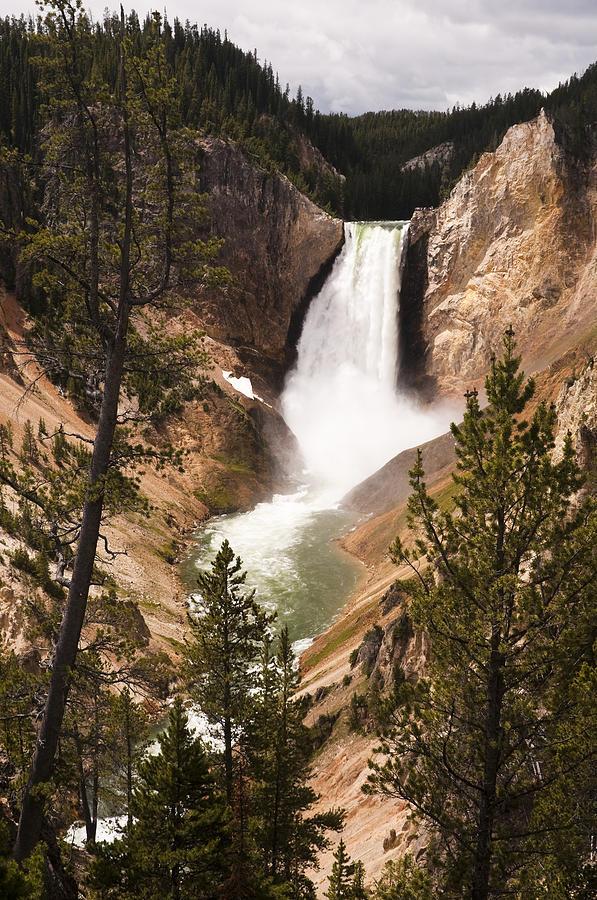 Yellowstone Photograph - Waterfall Of Yellowstone by Chad Davis