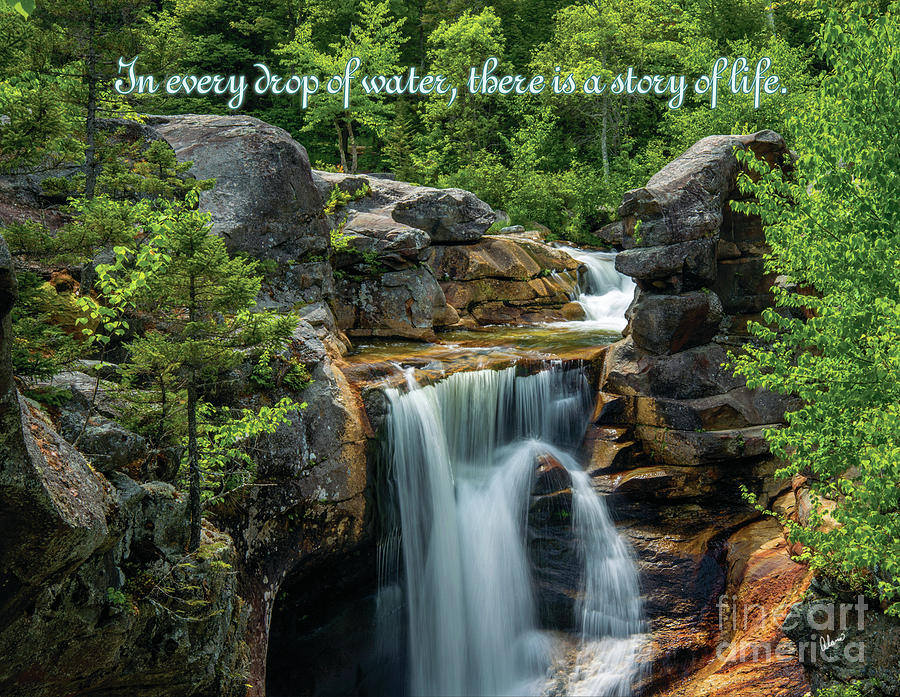 Waterfall Quotes Waterfall Quote Photograph by Alana Ranney Waterfall Quotes