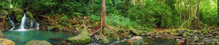 Waterfall Photograph - Waterfalls And Banyans by Megan Martens