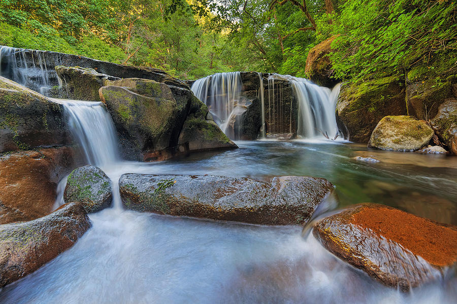 Siuslaw National Forest Photograph - Waterfalls at Sweet Creek Falls Trail by David Gn