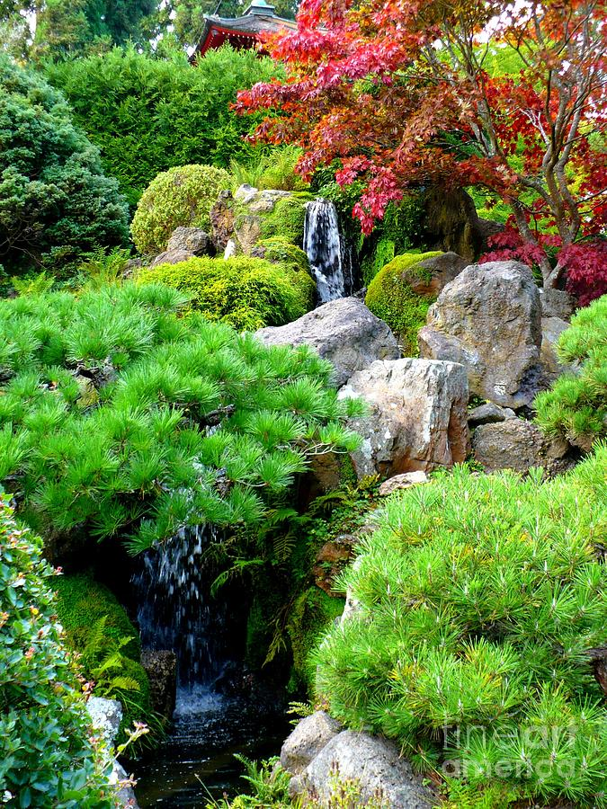 waterfalls in japanese garden photograph by carol groenen