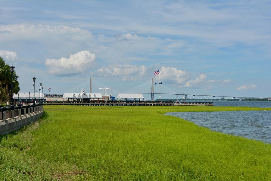 Waterfront Park Charleston Photograph