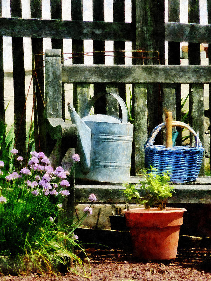 Flowers Photograph - Watering Can And Blue Basket by Susan Savad