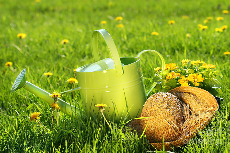 Green Digital Art - Watering Can In The Grass by Sandra Cunningham