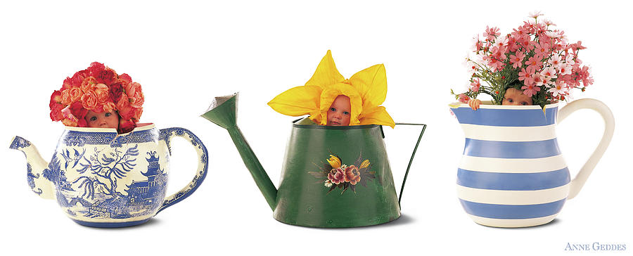Watering Can Photograph - Watering Cans by Anne Geddes