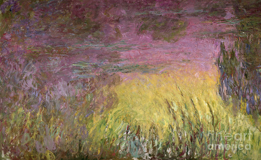 Claude Painting - Waterlilies At Sunset by Claude Monet