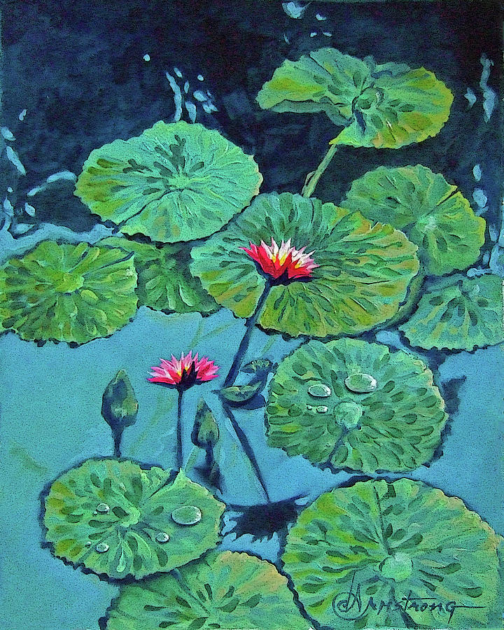 Water Painting - Waterlily by Denise Armstrong