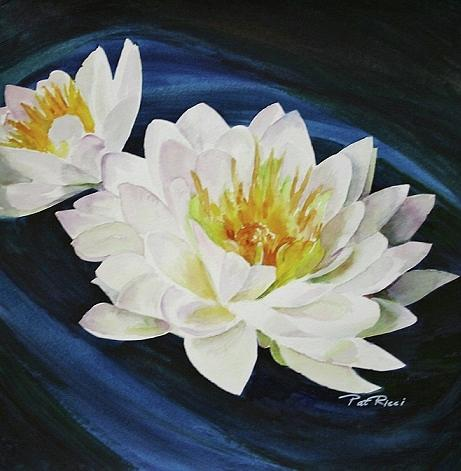 Waterlily by Patricia Ricci