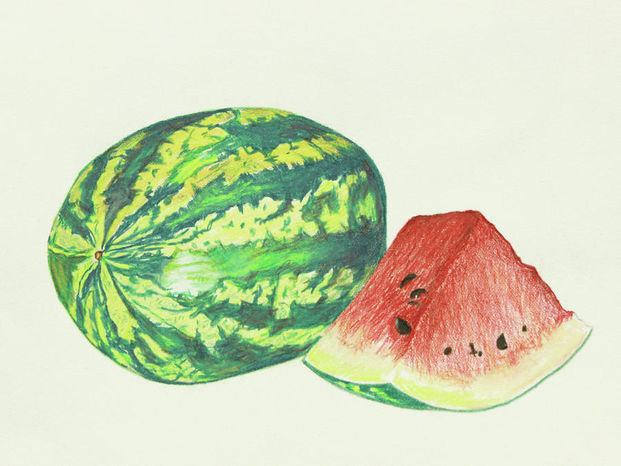 Watermelon Images Drawing
