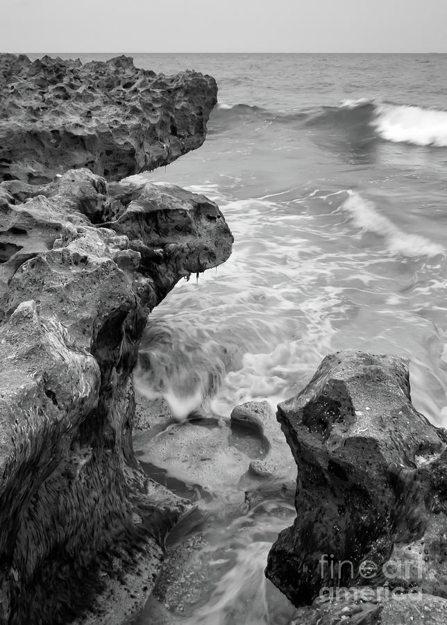 Waves and Coquina Rocks, Jupiter, Florida #39358-BW by John Bald