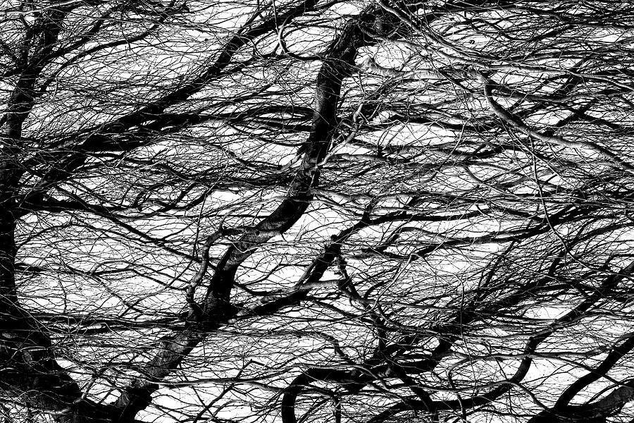 Waves by Dawn J Benko