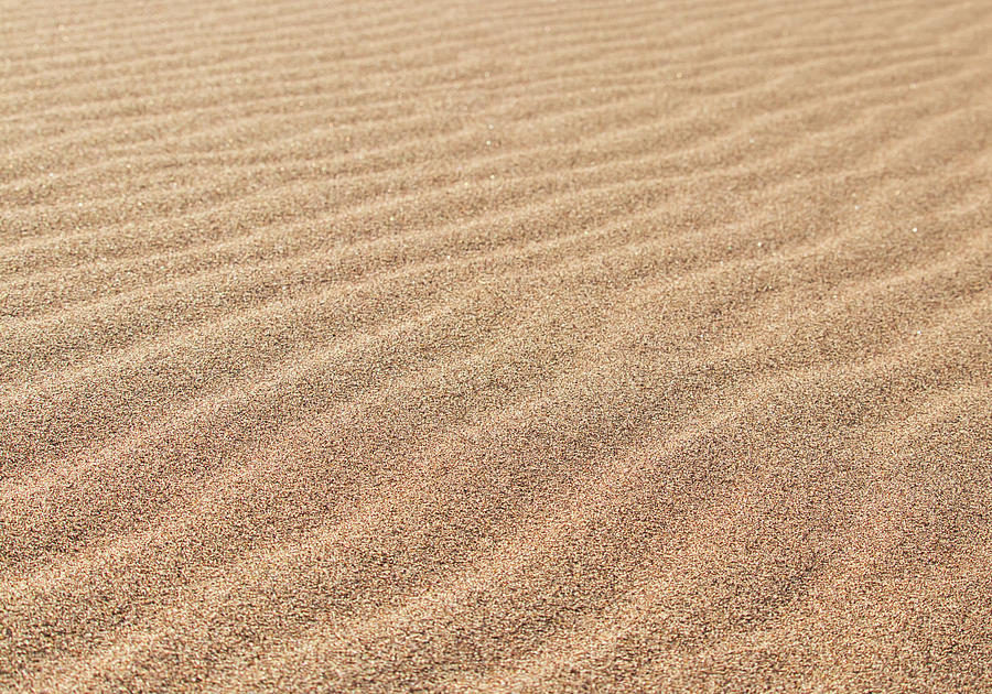Great Sand Dunes National Park Photograph - Waves in the Sand by Kevin Schwalbe