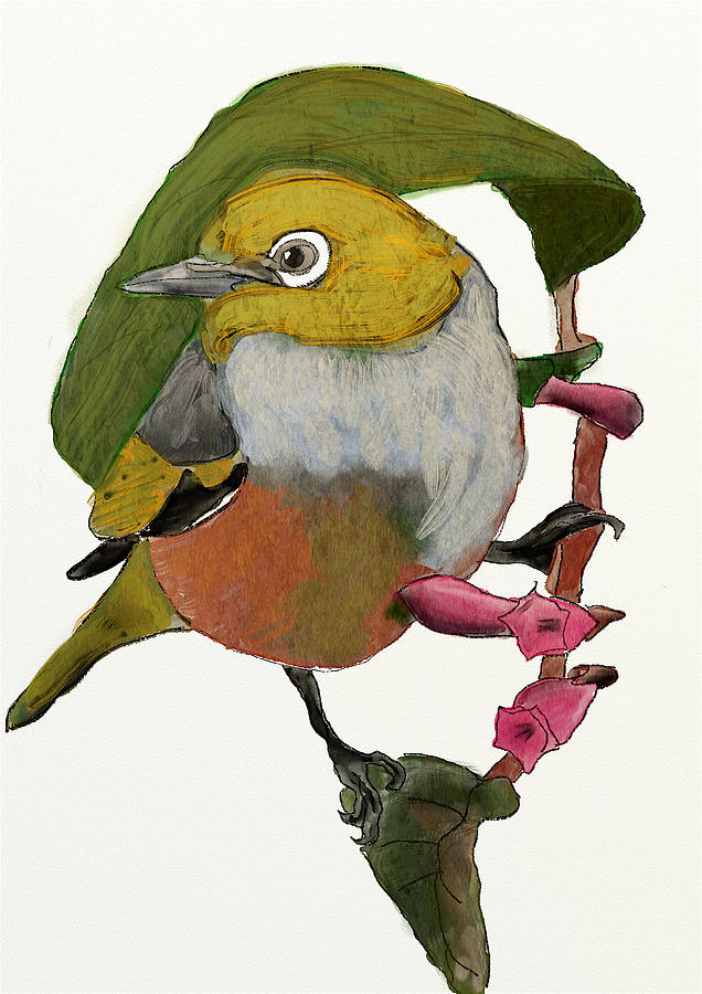 Waxeye Digital Art - Waxeye by Brett Shand