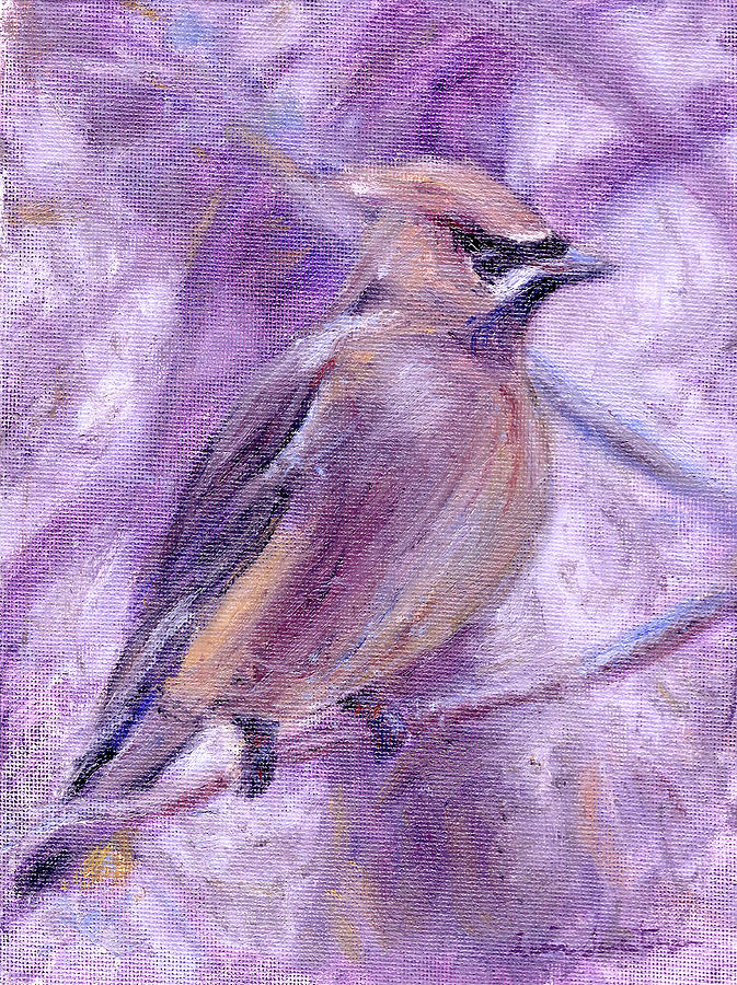 Birds Painting - Waxwing by Quin Sweetman