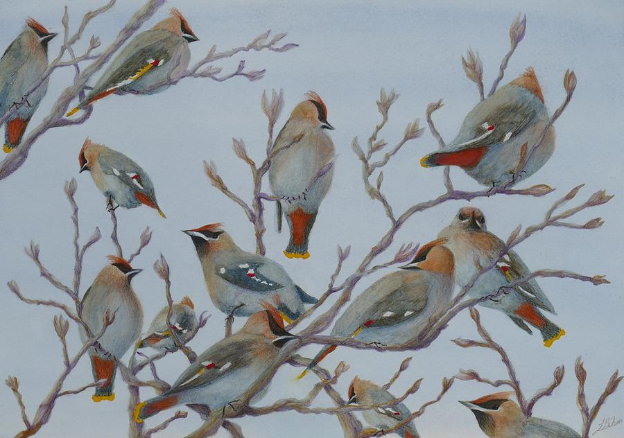 Asian Painting - Waxwings by Lisa Gibson Art