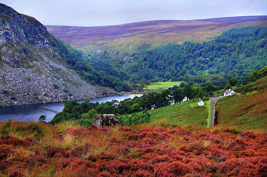 Wicklow Photograph - Way Home. Wicklow. Ireland by Jenny Rainbow