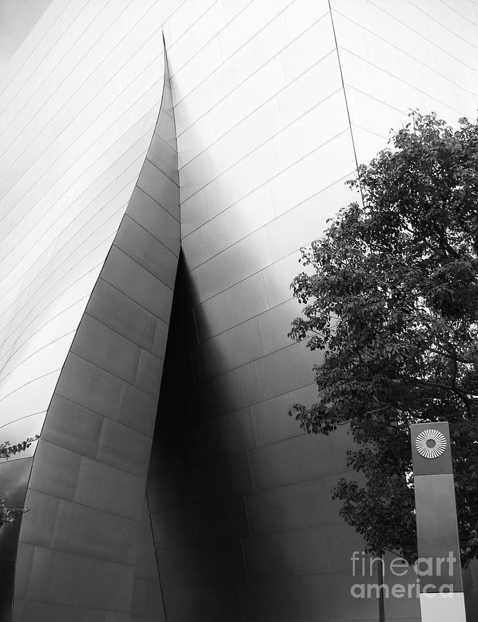 Digital Photograph Photograph - Wdch No11 by Mic DBernardo