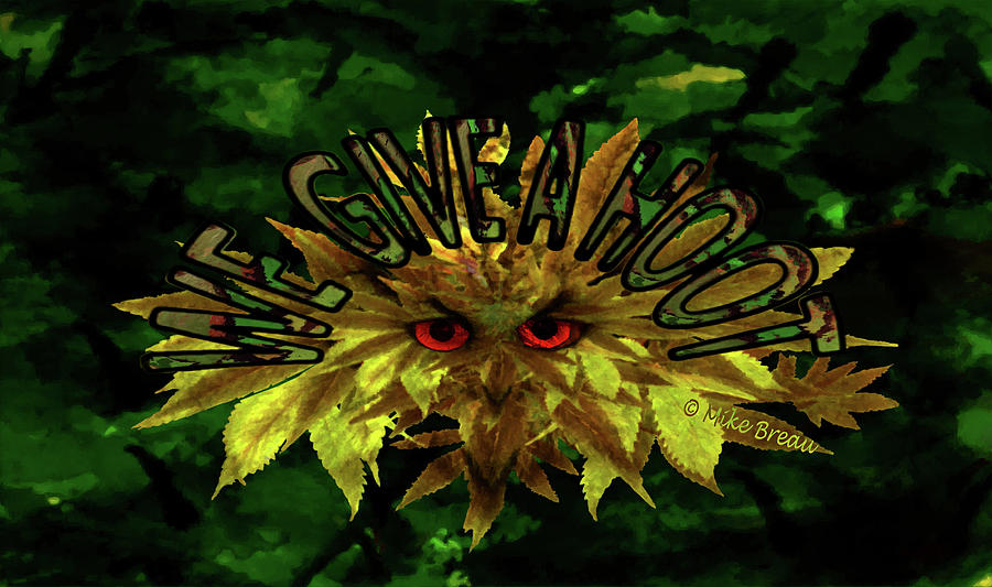 We Give A Hoot-marijuana Camouflage Art Mixed Media