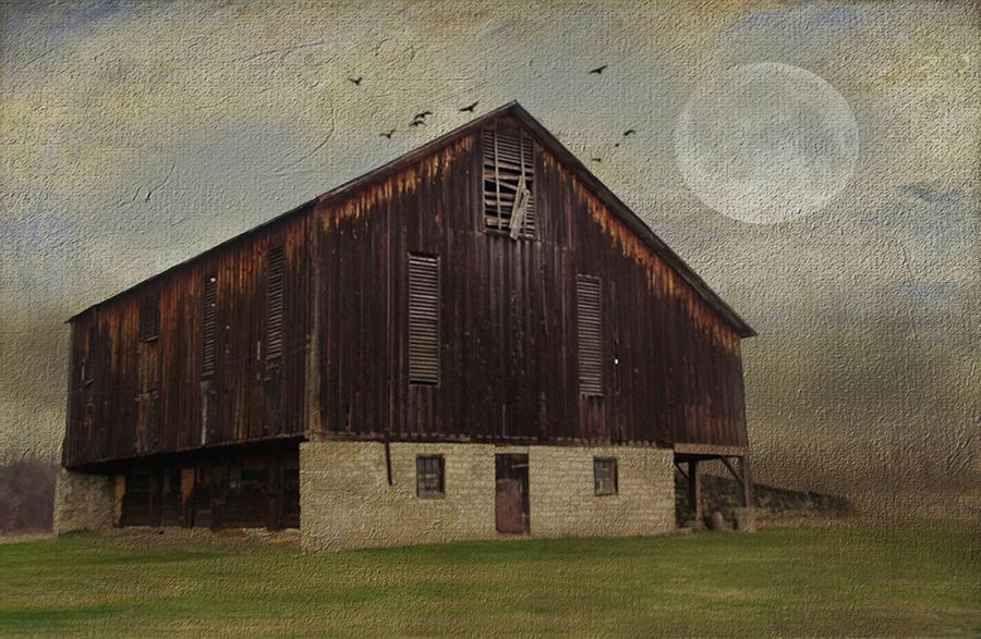 Barn Photograph - Weathered Barn And Birds by Stephanie Calhoun