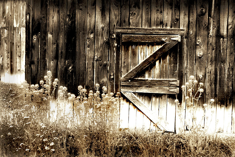 weathered barn door photograph by gray artus