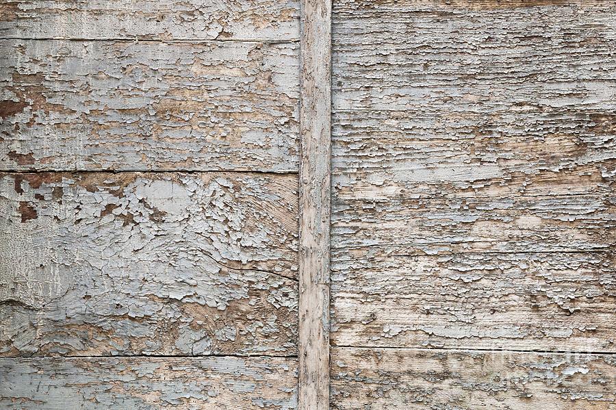 Wood Photograph - Weathered Wood Background by Elena Elisseeva