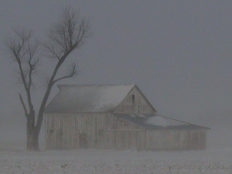 Barn Photograph - Weathering The Blizzard by J R Seymour