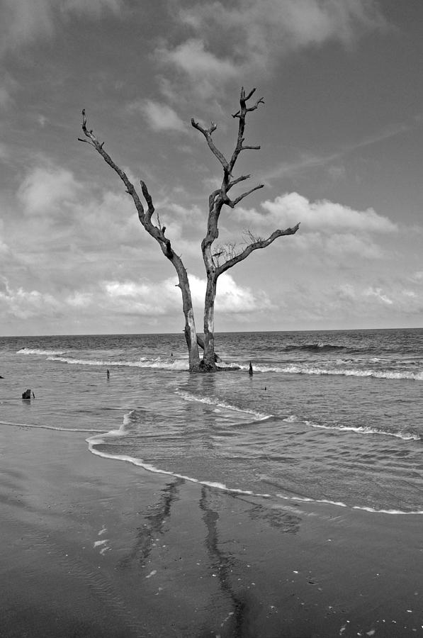 Weathering The Tide Photograph by Donnie Smith