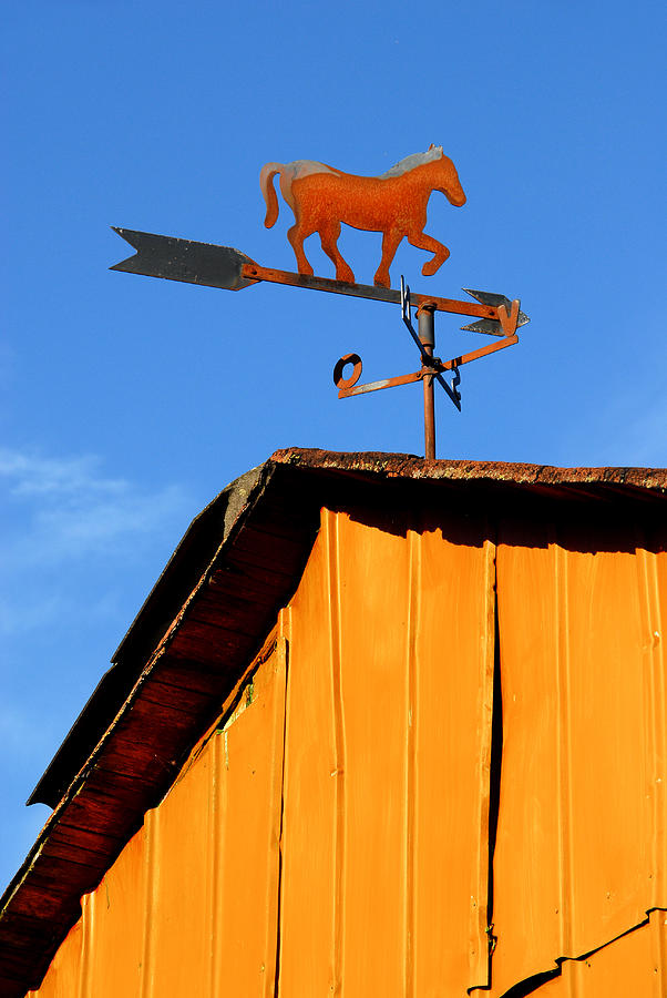 Weathervane Photograph - Weathervane by Robert Lacy