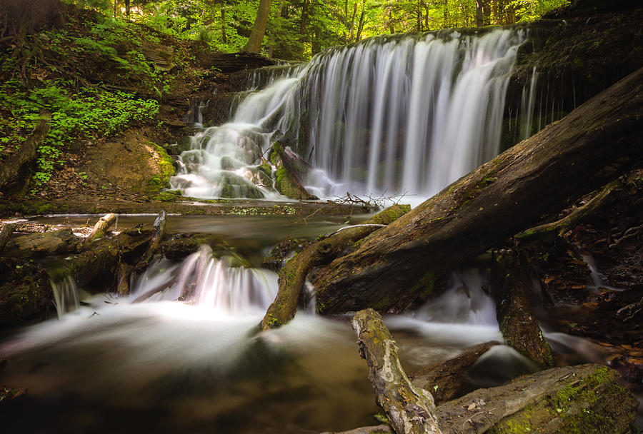 Waterfalls Photograph - Weavers Creek Falls by Cale Best