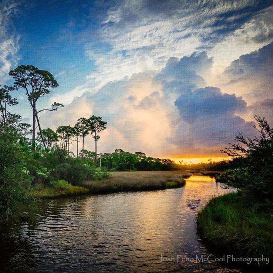 M Photograph - Weeks Bayou Sunrise by Joan McCool