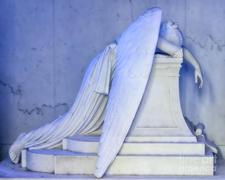 Weeping Angel 2 - Nola Photograph