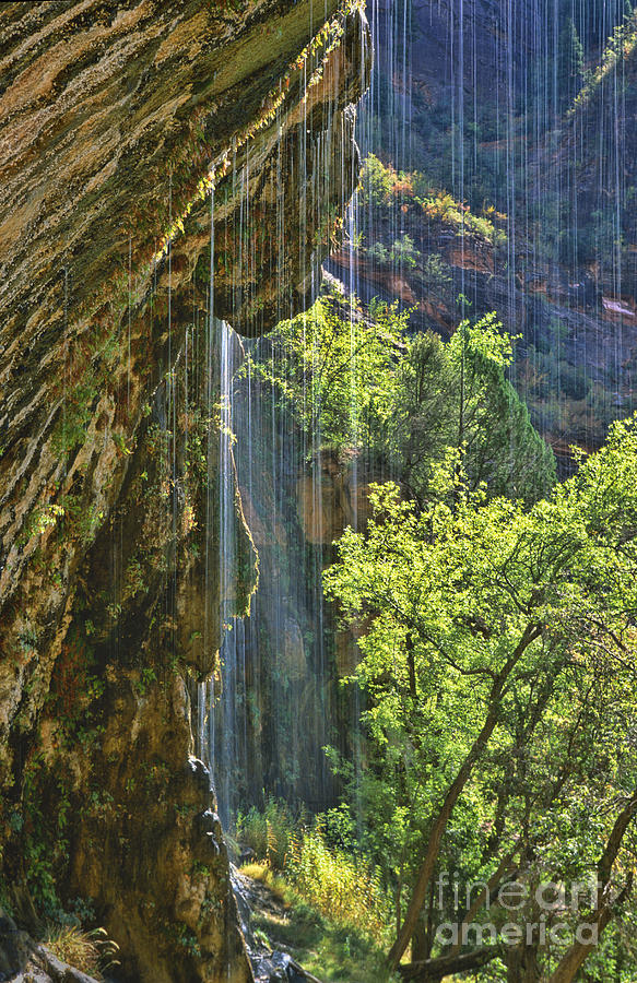 Southwest Photograph - Weeping Rock - Zion Canyon by Sandra Bronstein