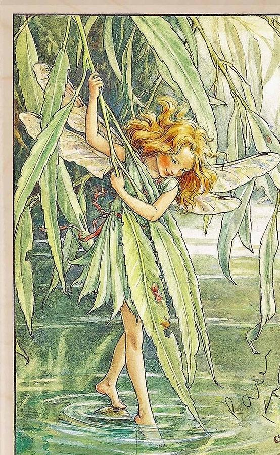Weeping Willow Fairy Painting by Melissa Holt