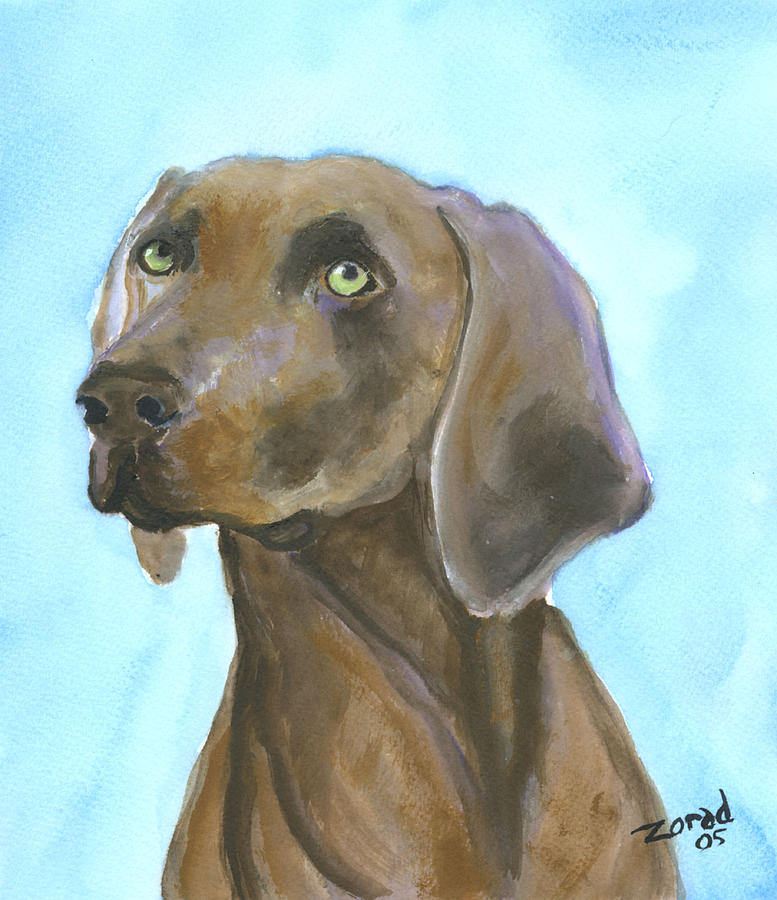 Weimarainer Dog Art Painting by Mary Jo Zorad