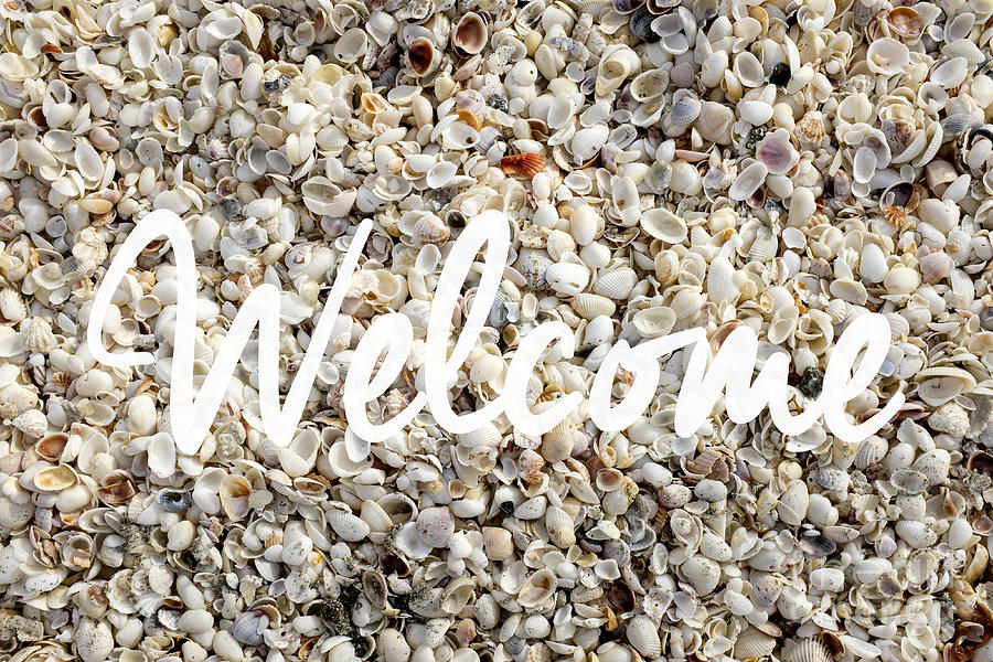 Florida Photograph - Welcome Seashell Background by Edward Fielding