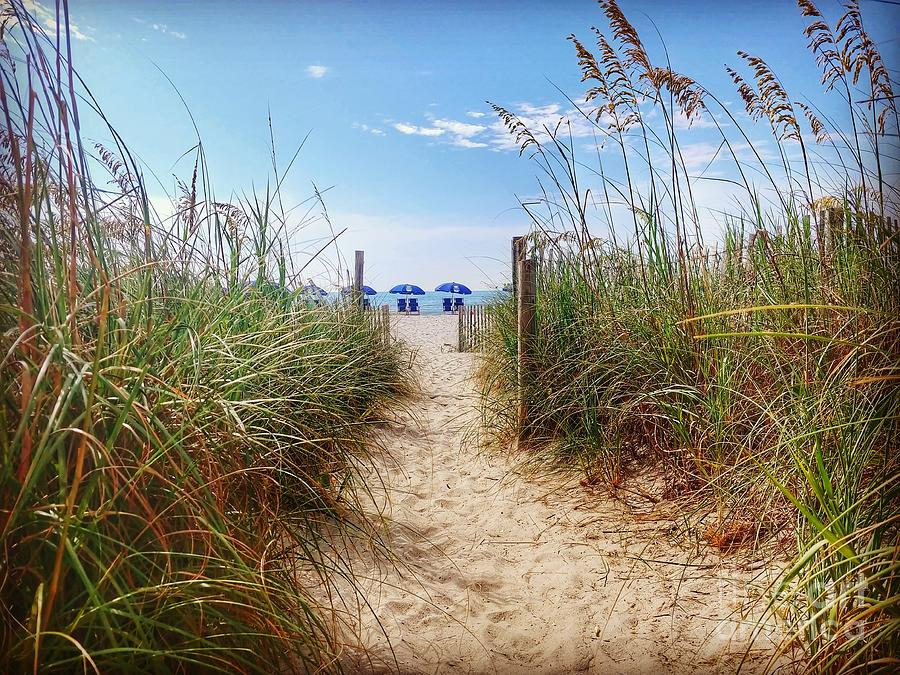 Beach Photograph - Welcome To The Beach by Noel Adams