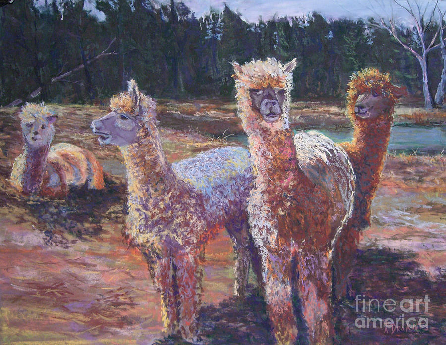 Alpaca Pastel - Welcoming Crowd by Alicia Drakiotes