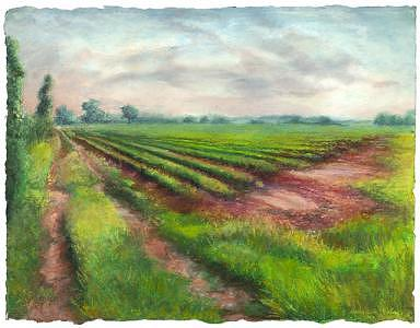 Wells Painting - Wells Farm I by Candy Maley
