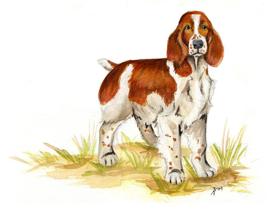 Dog Portraits Painting - Welsh Springer Spaniel by Katy Ryan