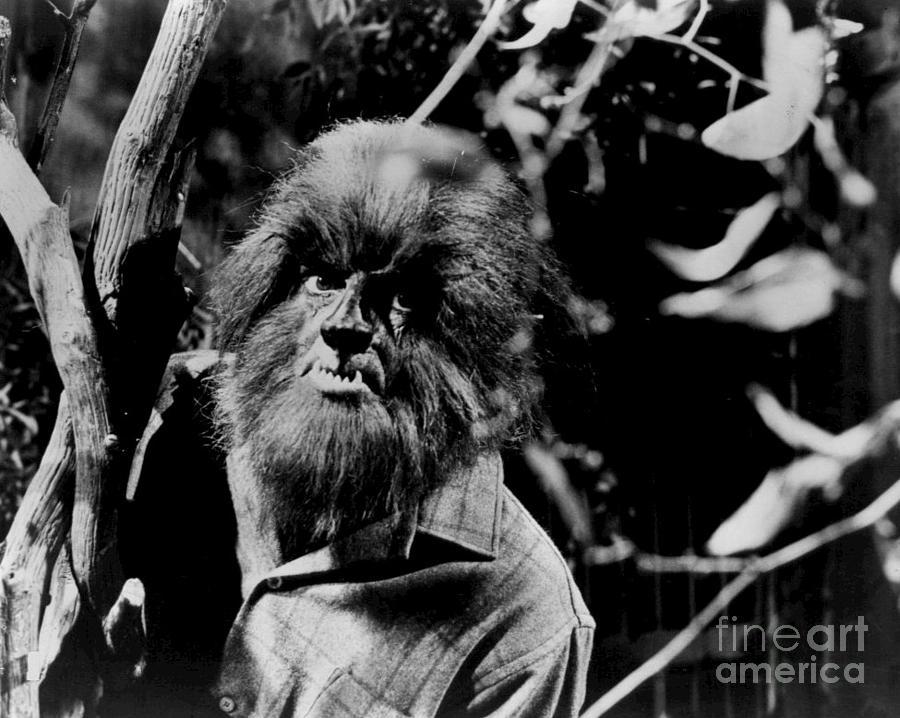Werewolf Photograph