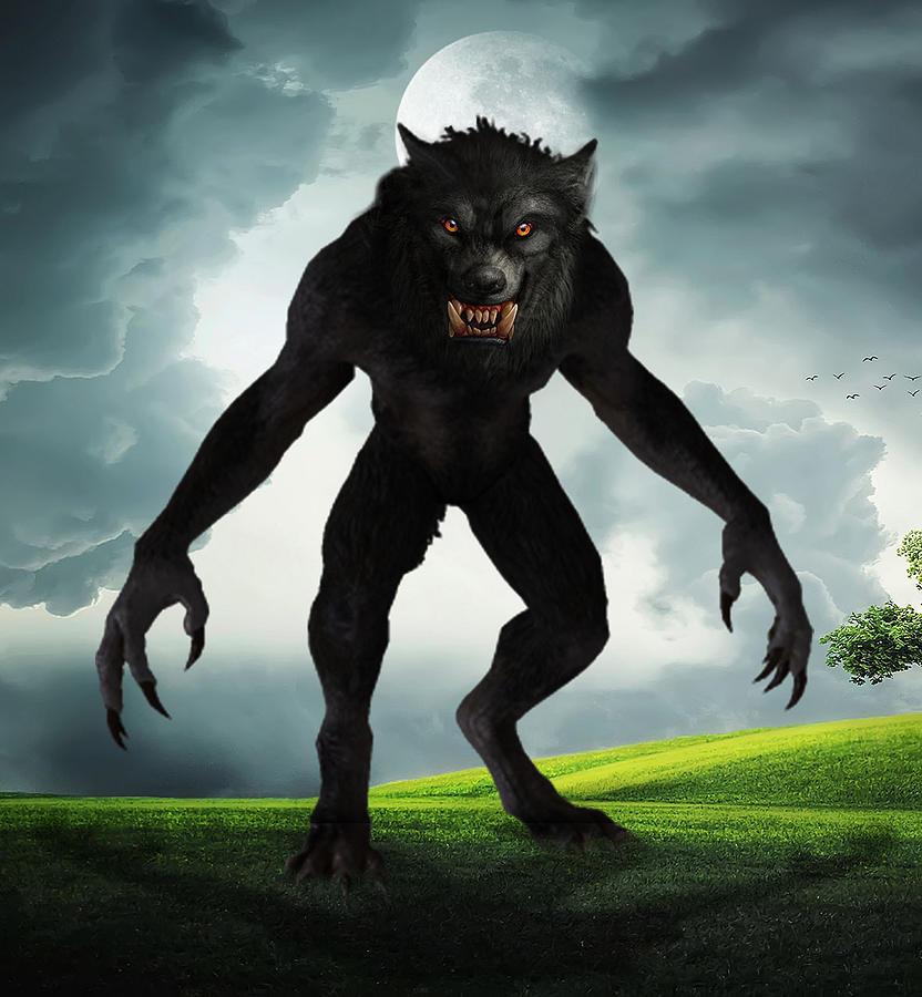 Werewolf Digital Art