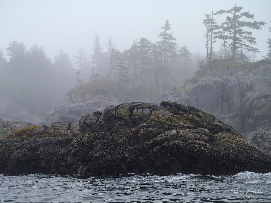 West Coast Landscape Ocean Fog II by Roxy Hurtubise