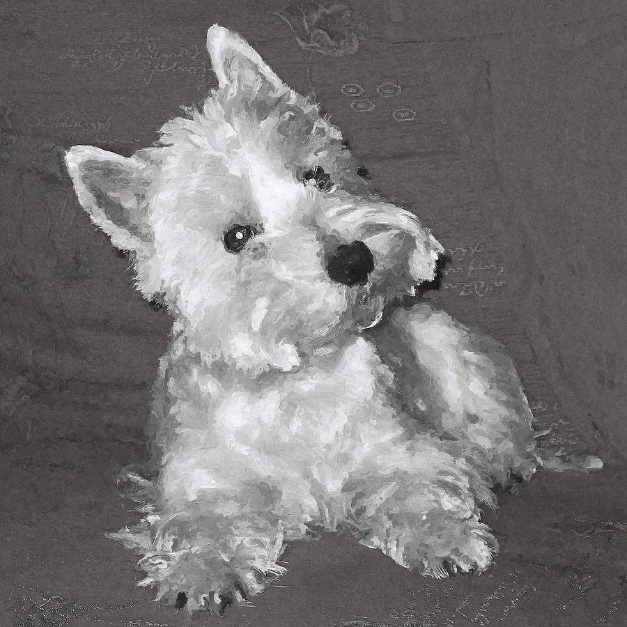 Westie Digital Art - West Highland White Terrier by Charmaine Zoe