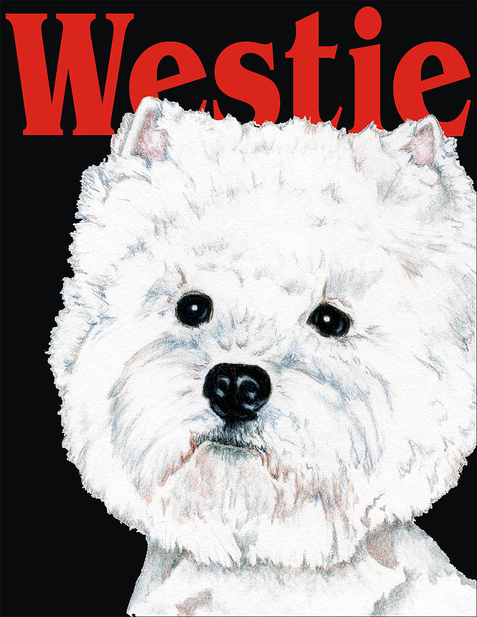 Westie Drawing - West Highland White Terrier Westie Urban Pop by Kathleen Sepulveda