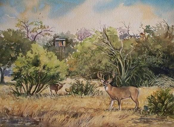 Deer Painting - West Texas Whitetails by Calvin Carter