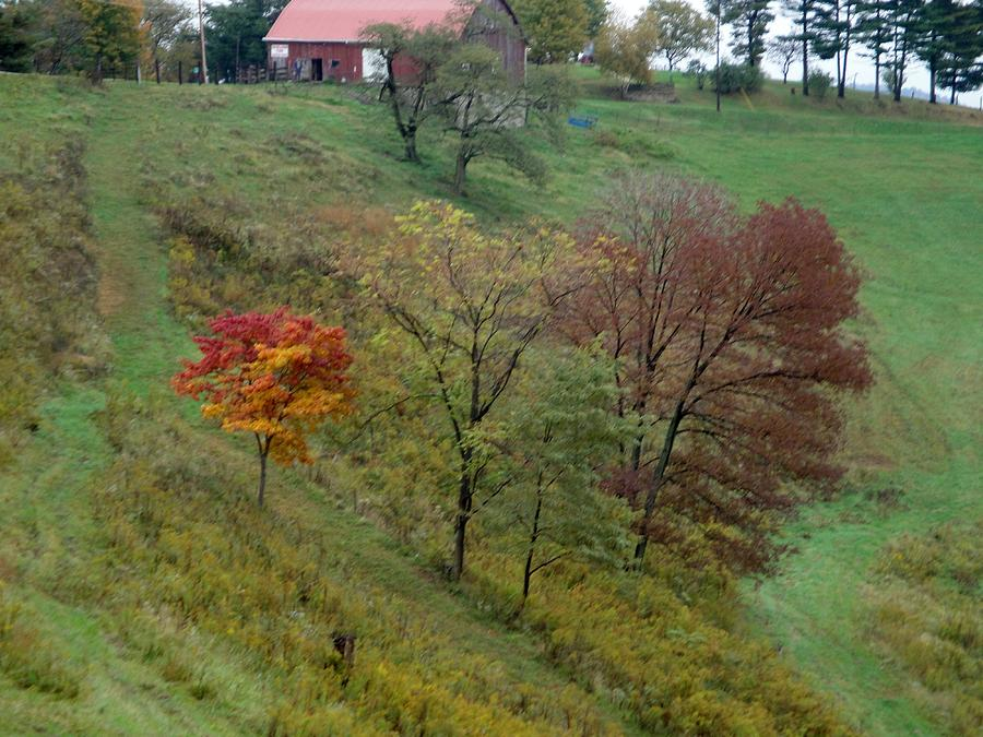 Autumn Photograph - West Virginia Hillside by Terry  Wiley
