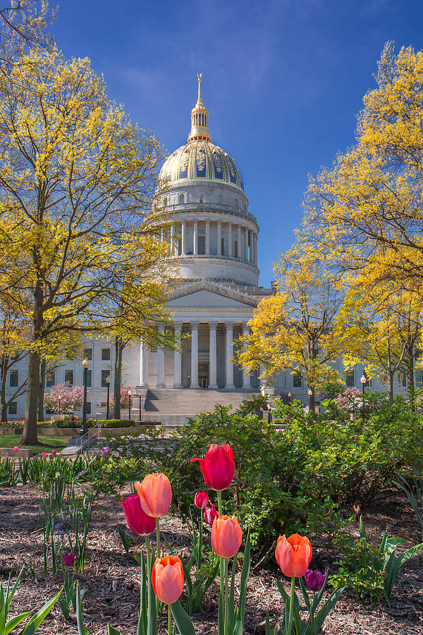 Spring Photograph - West Virginia State Capitol Colors Of Spring by Mary Almond